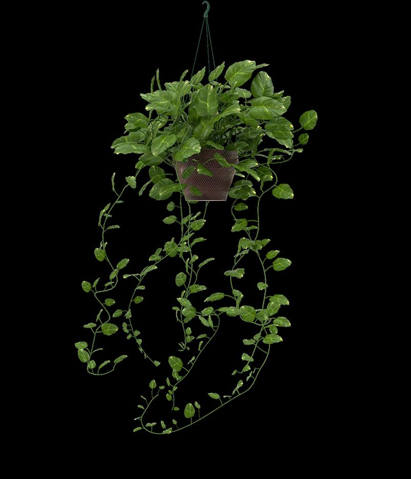 Planter - large1